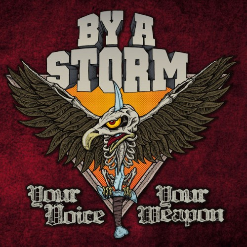 By A Storm ‎– Your Voice Your Weapon / LP