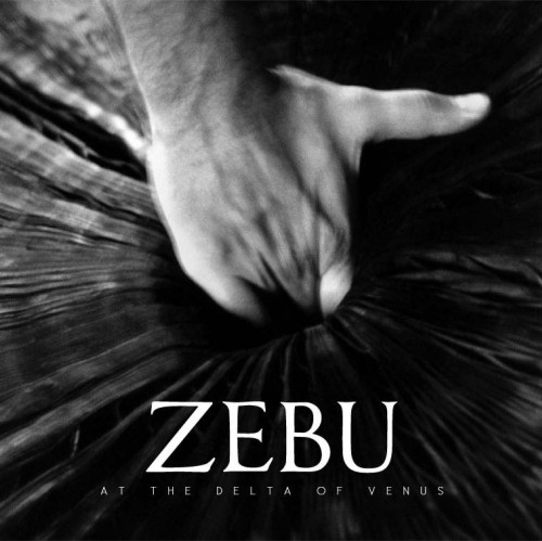 Zebu – At The Delta Of Venus / LP